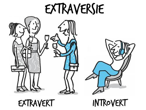 Introverte ondernemers